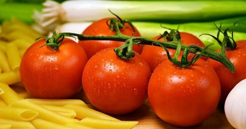 Lima Jenis Tomat Yang Paling Populer Di Indonesia